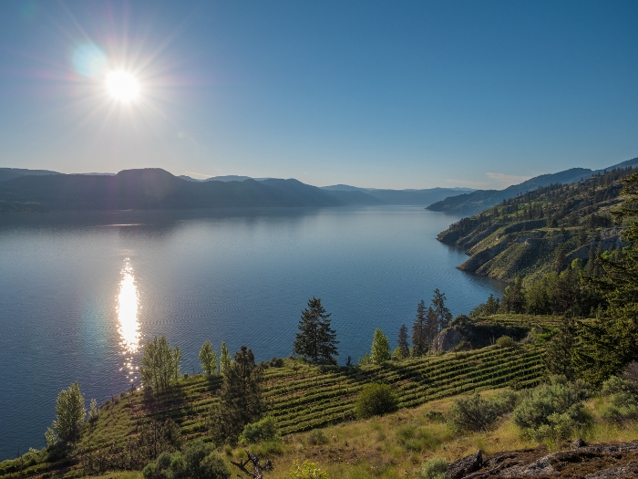 Chad Wozniak Vineyard Penticton Remax
